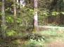 Balade contée (Etalle) 01/05/2012